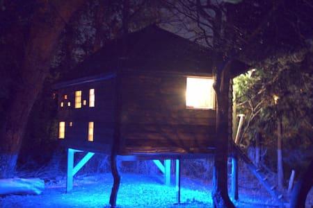 The Braille House - City Treehouse - Kilkenny - Treehouse