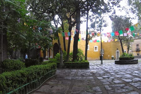 Lovely studio suite, in the heart of Coyoacan - Ciudad de México - Loft