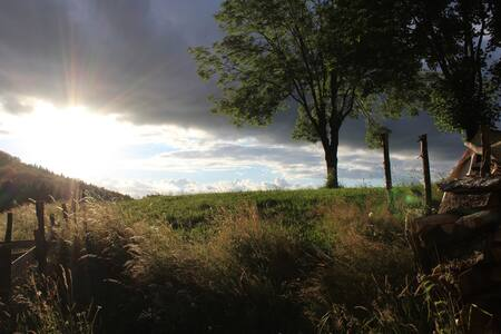 Terrain de camping avec vue - Stan