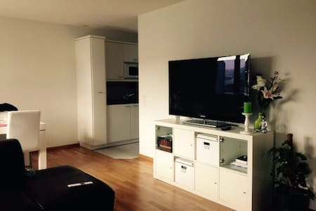 Attika, klein aber fein - Hägendorf - Apartment