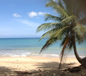 Villa Playa Beach Villa sleeps 20 - Rumah