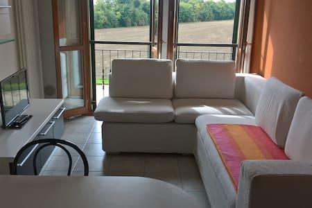 Tra Ferrara e Bologna, relax.... - Poggio Renatico - Huoneisto