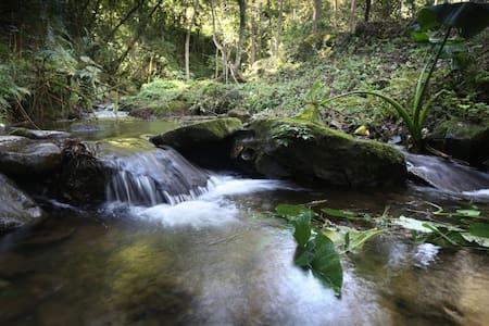 Casa en  bosque  30 min de Xalapa - Maison