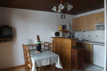 studio meublé plein centre station - Vénosc - Appartamento