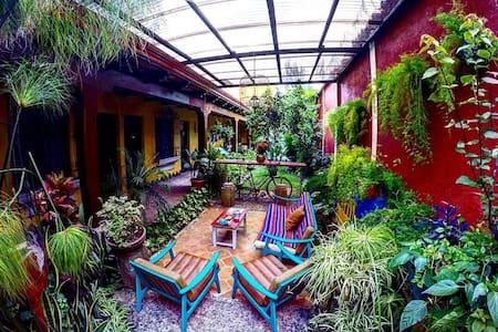 Homestay  in Antigua - Ház