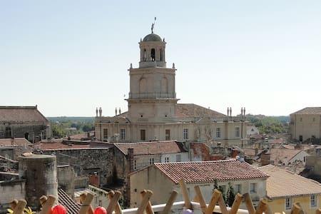 Les Amazones d'Arles - Centre historique - 115m2 - Apartment