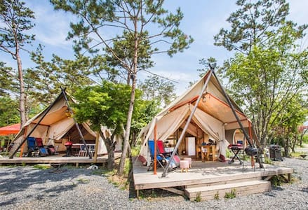 Pine tree glamping- Luxurious Glamping/ 파인트리글램핑 - Idong-myeon, Pocheon-si - Tent
