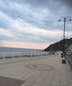 Rear Facing Single Room - Aberystwyth Seafront - Bed & Breakfast