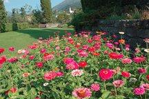 Villa, giardino botanico e piscina