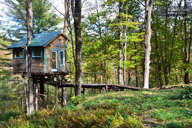 The fern forest treehouse is a quaint getaway in green for Tiny mountain homes